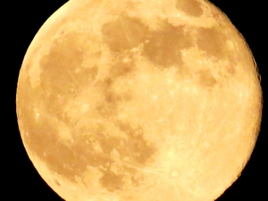 moon-1430241-m